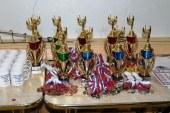 Открытый турнир Самарской области по черлидингу