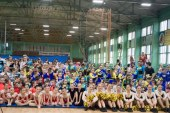 Итоги региональных соревнований по черлидингу — 2016