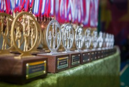 21 декабря состоялся фестиваль «Добейся успеха на Приазовье»